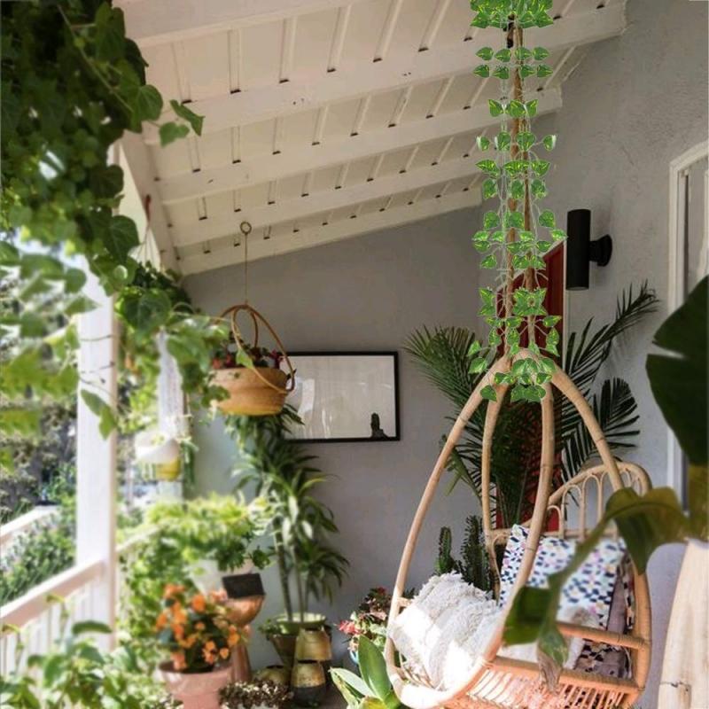 Las Mejores Plantas Colgantes para el Hogar