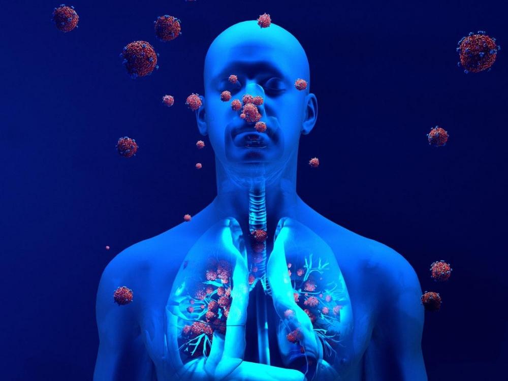 6 Tips para Fortalecer el Sistema Inmunológico
